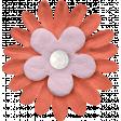 The Good Life: January 2021 - Elements Kit - Flower 1c