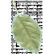 The Good Life: January 2021 - Elements Kit - Leaf 1