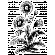 The Good Life: April Collage Kit - Sticker Flower 1