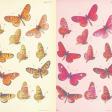 Good Life Oct 21_Paper Butterflies