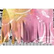 Good Life Oct 21 Collage_Fringe-Pink Yellow