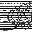 Leaf Stamp Set 001ee