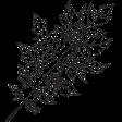 Leaf Stamp Set 001i