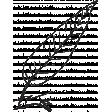 Leaf Stamp Set 001jj