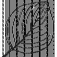 Leaf Stamp Set 001p