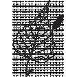 Leaf Stamp Set 001qq