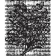 Leaf Stamp Set 001rr