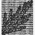 Leaf Stamp Set 001u