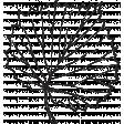 Leaf Stamp Set 001kkk
