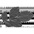 Leaf 047 Template