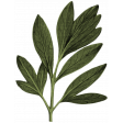 Birdhouse Green Leaves