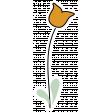 Confidence Tulip Orange