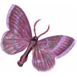 Autumn Day Element Butterfly 01