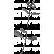 Leaves No.2 - Templates - Leaf 19