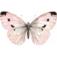 Spring Day - Elements - Butterfly