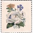 Spring Day - Element - Stamp