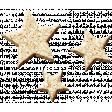 The Guys - Elements - Cork - Stars