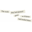 Secret Garden - Elements - Word Art Fairies