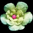 Summer Lovin - Minikit - Flower - Green