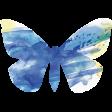 Butterflies - Butterfly 05