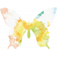 Butterflies - Butterfly 09