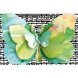 Butterflies - Butterfly - Stapled 02