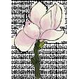 Mixed Media 5 - Elements - Magnolia Stamp