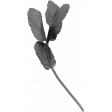 Leaf 024