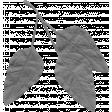Leaf 025