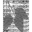 Leaf 026