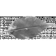 Leaf 027