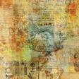 Animal Kingdom - Collage 1 Paper