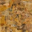 Animal Kingdom - Collage 5 Paper