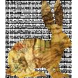 Animal Kingdom - Hare