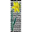 Reflections Mini Kit - Daffodil 2