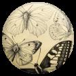 Jane - Butterfly Brad