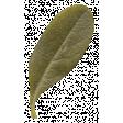 Autumn Day - Elements - Leaf 7