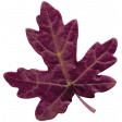 Autumn Day - Elements - Leaf 1