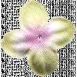 Flowers No.7  - Flower 2