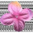 Flowers No.7  - Flower 3