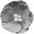 Flowers No.9 Templates 12