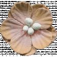 Flowers No.9 - Flower 11