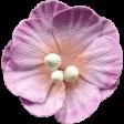 Ramadan - Flower 1