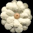 Flowers No.11 - Flower 6