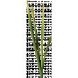 Summer Day Elements - Grass