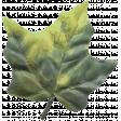 Cozy Day Elements - Leaf 1