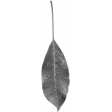 Leaves No.1 – Template 7