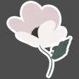 Winter Day  Elements - Cream Pink Flower