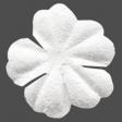 Winter Day Elements - White Flower