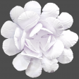 Flowers No.18 – Flower 3